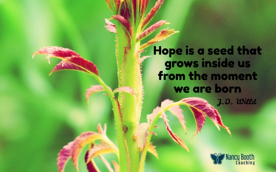 How Does Your Hope Garden Grow?